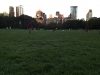 central-park-sheeps-meadow